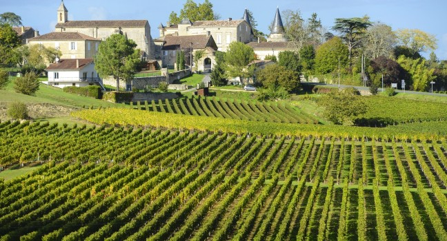 #Bordeaux - Vacation Near France Famous Vineyards #travel #FrizeMedia