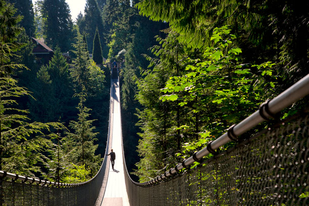 Capilano Suspension Bridge Vancouver Canada - FrizeMedia