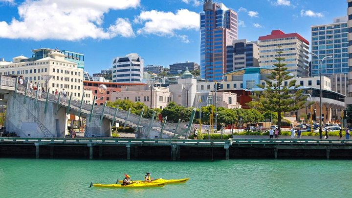 Wellington Harbor - FrizeMedia