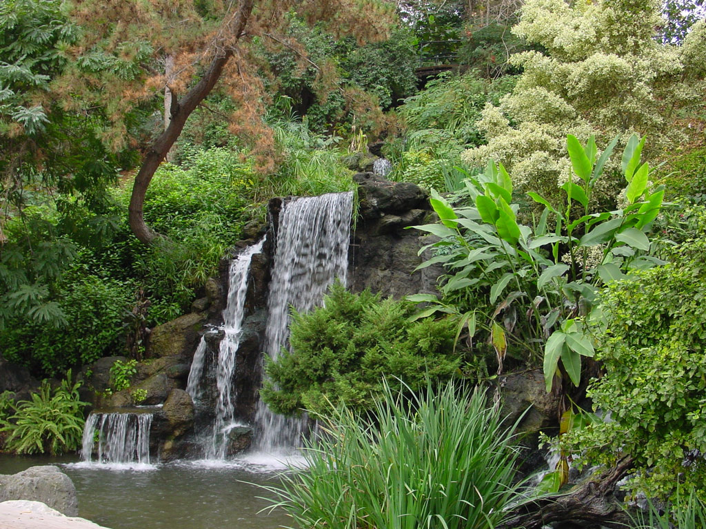 Los Angeles County Arboretum And Botanic Garden - FrizeMedia