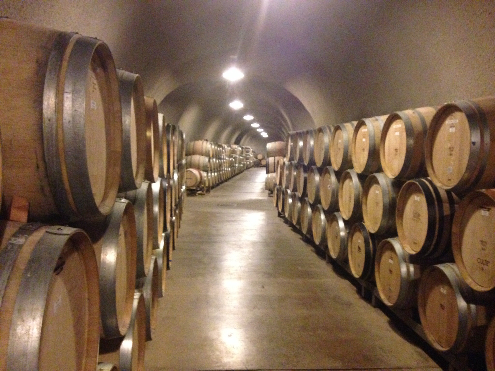 California - Napa Sonoma Wine caves - FrizeMedia Digital Marketing Advertising Consulting