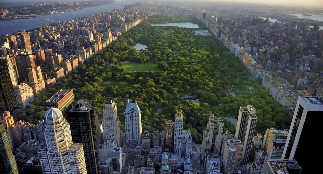 New York - Central Park - FrizeMedia - DigitalMarketing