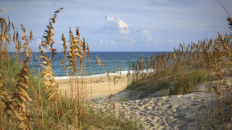 North Carolina Outer Banks - USA - FrizeMedia - Digital Marketing - Advertising - Consulting