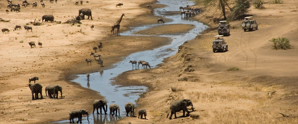 A Brief Guide to Africa's Dry and Rainy Seasons